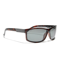 BLIZ Солнцезащитные очки Polarized Lars-Ake Brown D