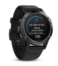 GARMIN Спортивные часы с GPS Fenix 5 Sapphire с черным ремешком